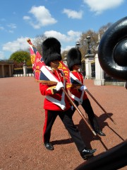 Cambio guardia Buckingham Palace