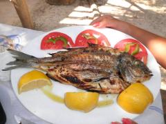 Bontà a base di pesce Daphni Beach